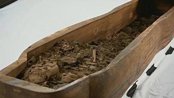 Университет музейіндегі тас табыттың ішінен мумия табылды