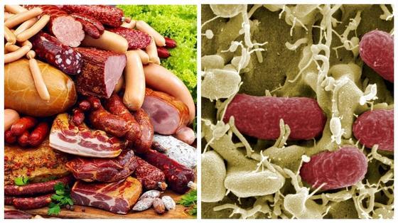 Бактерии кишечной палочки нашли в мясных изделиях на прилавках Казахстана