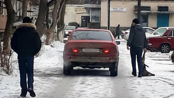 Мужчина с ружьем расстреливал собак на глазах у прохожих в Сарани