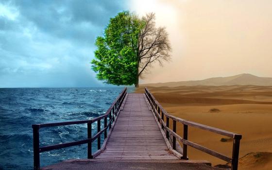 Смысл жизни человека: цитаты философов