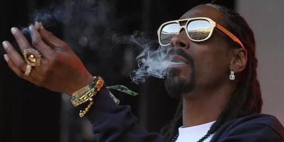 Работа мечты: компания открыла вакансию «ценителя» марихуаны