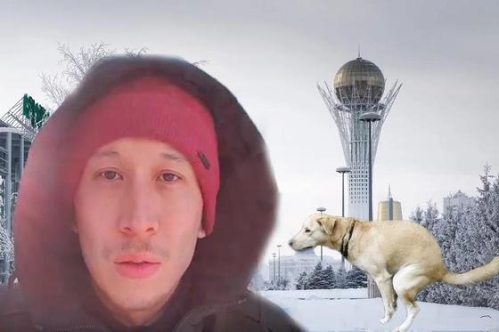 """""""Подснежники в виде какашек"""": Астана погрязла в собачьих отходах (видео)"""