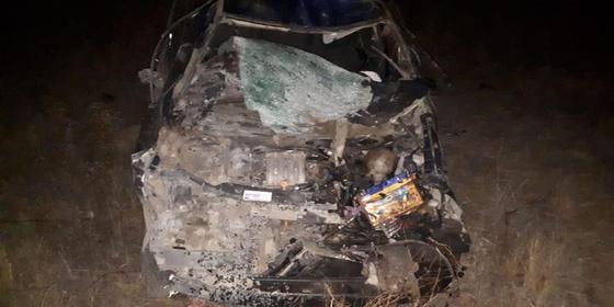 Автомобиль врезался в табун лошадей в ЗКО