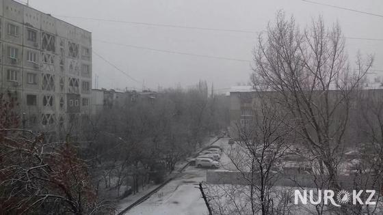 Весенний снег накрыл Алматы (фото)
