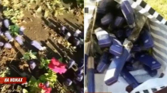 «Восстание ножей»: острые предметы в клумбах Караганды нашли уже в третий раз