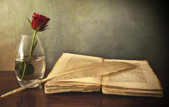 Красивые слова о любви из книг