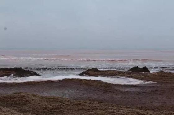 Каспий теңізі. Фото: lada.kz