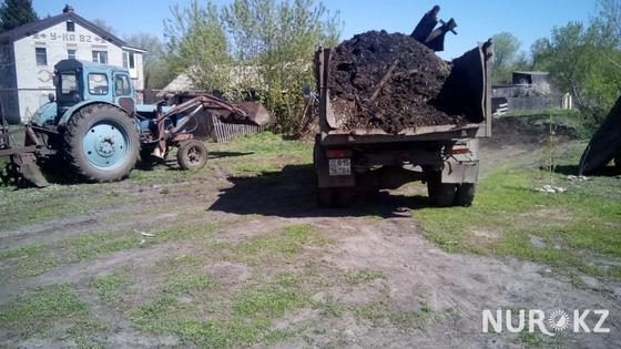 Завалившего свиными фекалиями часть села депутата наказали в ВКО