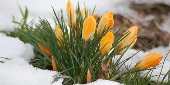 Погода на март