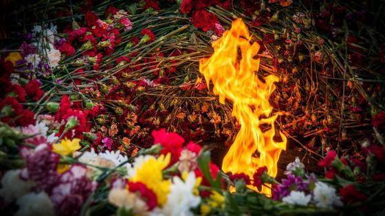 Вечный огонь, гвоздики