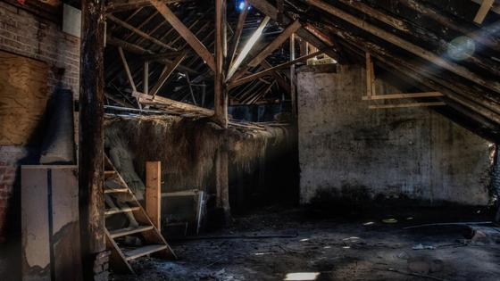 Сарай с лестницей и крышей