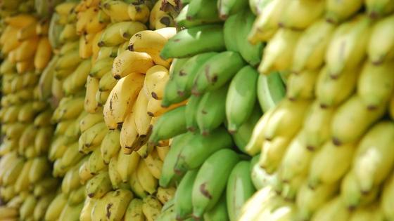 Бананы разной степени зрелости