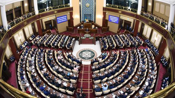 Парламент. Депутаты