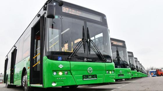 Несколько автобусов стоят в ряд