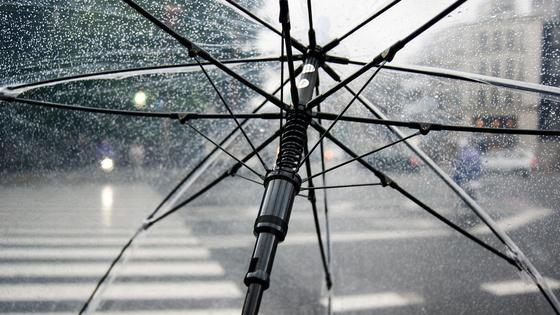 Раскрытый прозрачный зонт