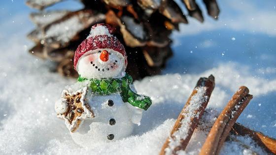 Самодельный снеговик на снегу