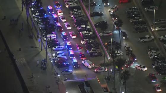 Полицейские разогнали пришедших на вечеринку в TikTok
