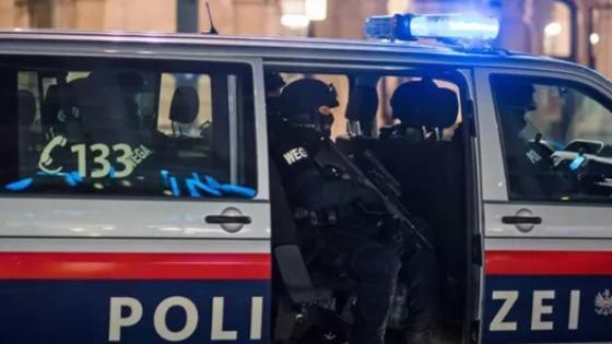 Вена көшелеріндегі полиция