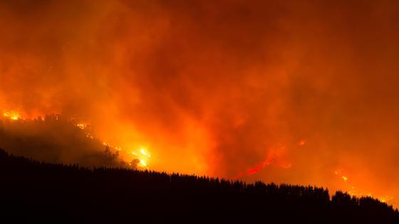 Лесные пожары в Испании