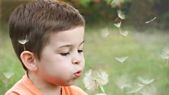мальчик дует на одуванчик