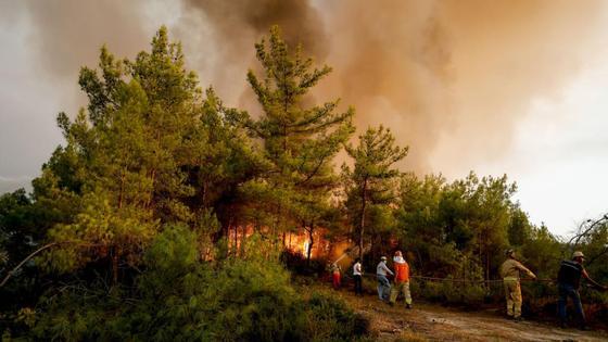 Пожарные тушат горящие леса в Турции