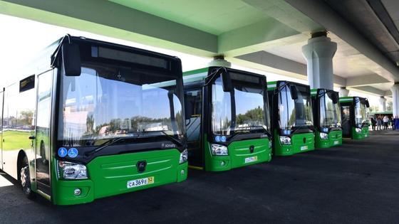 Автобусы стоят на дороге