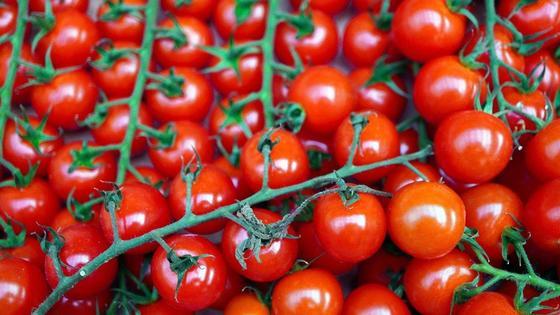Круглые красные томаты черри на плодоножках