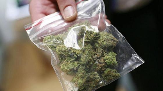 есірткі марихуана