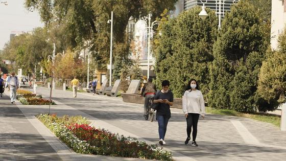 Люди в масках гуляют на аллее
