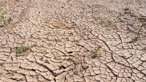Потрескавшаяся без влаги земля