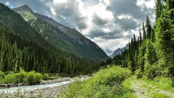 Природа в горах