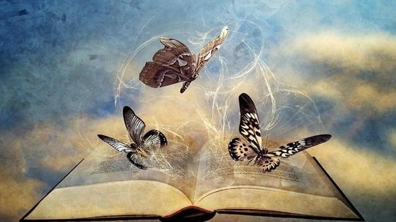 книга и бабочки
