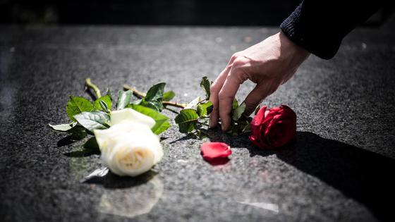 Рука кладет цветок на мраморную плиту