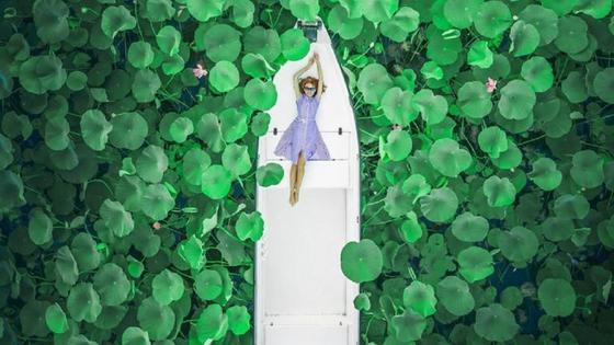 Девушка в лодке среди лотосов