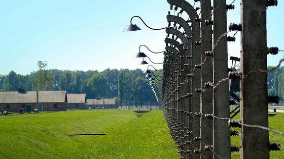 Колония с установленным в ней забором с колючей проволокой