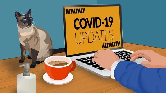 Новости про коронавирус на экране ноутбука