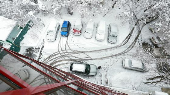 Автомобили замело снегом