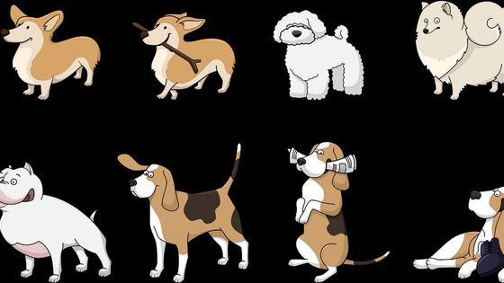 породы собак (рисунок)