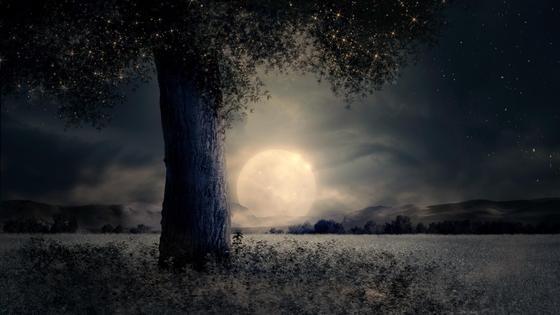 Луна и пейзаж