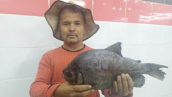 """Рыбак поймал """"пиранью"""" в Шымкенте"""