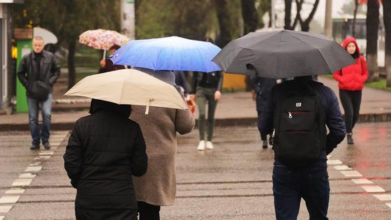 Люди с зонтиками переходят дорогу