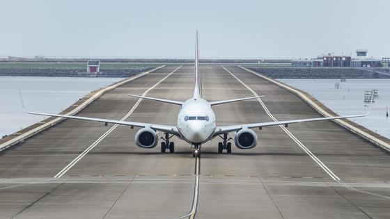 Самолет садится на взлетно-посадочной полосе