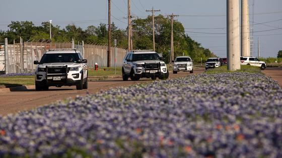 Полицейские машины на месте преступления