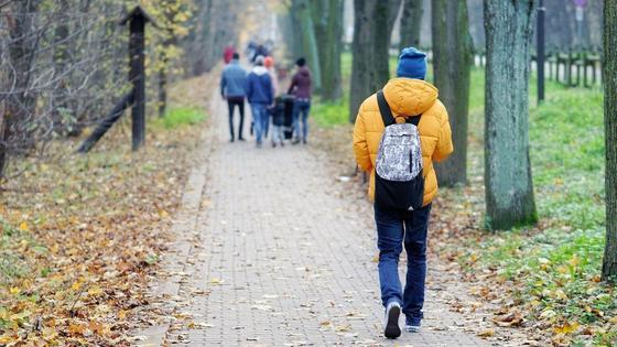 Мальчик с рюкзаком идет по аллее