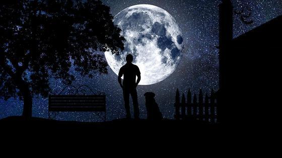 Мужчина с собакой смотрят на Луну