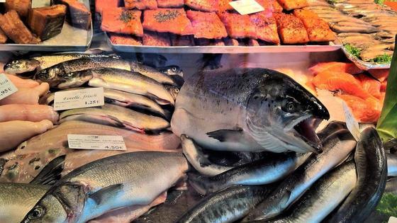 Рыба на прилавке магазина