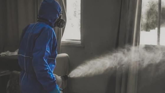 Сотрудник травит насекомых в помещении