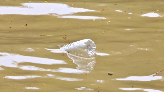 Пластиковая бутылка плавает в грязной воде
