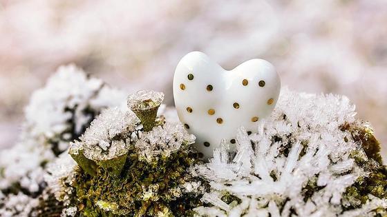 сердце на снегу