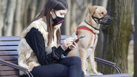 девушка и собака сидят на скамейке